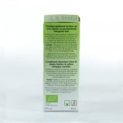 Echinacea purpurea • biover • 50 ml.